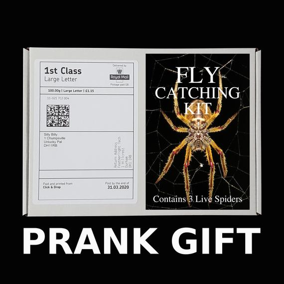 6. Fly Catching Kit